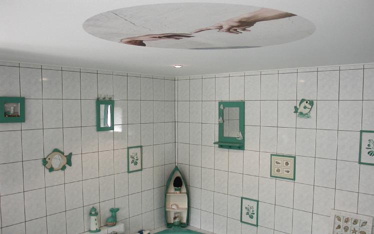 Plafond imprimé - ALSARENOV'